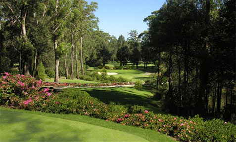 Mollymook Accommodation - Mollymook Golf Club